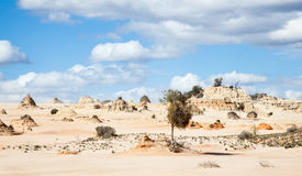 Alien moonscape Lake Mungo Australia Royalty Free Stock Photo