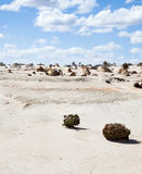 Alien moonscape Lake Mungo Australia. Lake Mungo is former inland lake now covered in strange formations Royalty Free Stock Image