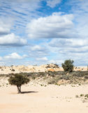Alien moonscape Lake Mungo Australia Royalty Free Stock Photos
