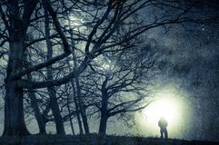 An alien night time concept edit. A spooky figure standing on the edge of woodland looking at lights in the sky on a stary night. With a grunge, vintage edit stock photo