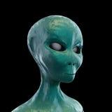 Alien portrait Stock Photos