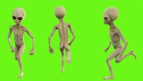 Alien running. Loopable animation on green screen. 4k. Ultra HD Alien running. Loopable animation on green screen vector illustration