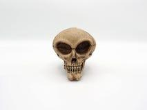 Alien skull. Royalty Free Stock Image