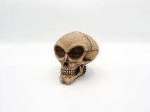 Alien skull. Stock Photo