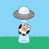 Alien Spaceship Beamed Cow Royalty Free Stock Photography