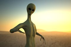 Alien on sunset Stock Image