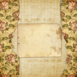 Alienated album for photos with painted roses. Grunge alienated album for photos with painted roses Stock Photos