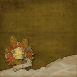 alienerad bakgrund skrynklig leaf Royaltyfria Bilder