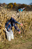 Aliens and haunted corn maze. Fake aliens stands guard outside a haunted corn maze, at a local farm in michigan royalty free stock photography