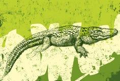 Aligator tekstury tło royalty ilustracja
