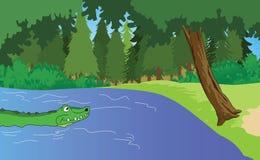 Aligator w bagnach ilustracja wektor
