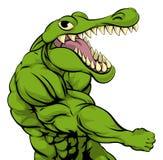Aligatora lub krokodyla maskotki uderzać pięścią Fotografia Stock