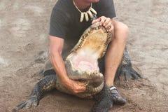 Aligatora wyczyn kaskaderski Fotografia Royalty Free