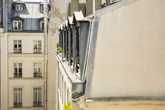 Aligned Apartment Windows of Paris, France Royalty Free Stock Images