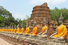 Aligned buddha statues with orange bands Stock Photo