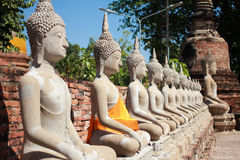 Aligned buddha statues. Wat Yai Chai Mongkhon Ayutthaya Bangkok stock images