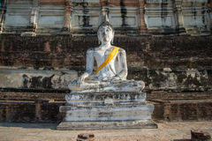Aligned buddha statues. At Wat Yai Chaimongkol Ayutthaya Stock Photos