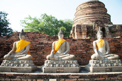 Aligned buddha statues. At Wat Yai Chaimongkol Ayutthaya Royalty Free Stock Images