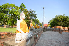 Aligned buddha statues Royalty Free Stock Photography