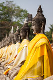 Aligned Buddha Statues at Wat Yai Chaimongkol Ayutthaya Bangkok Royalty Free Stock Images
