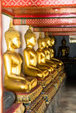 Aligned gold buddha Royalty Free Stock Images