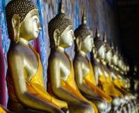 Aligned gold buddha Stock Image
