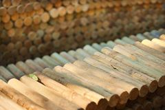 Aligned timber logs Royalty Free Stock Image