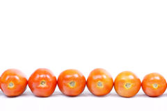 Aligned tomatoes on white. Aligned tomatoes isolated on white background stock photography