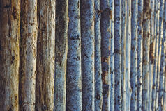 Aligned tree trunks. Detail of a pile of aligned dry tree trunks. Stacked firewood pattern. Timber industry. Nature background Royalty Free Stock Photography