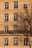 Aligned windows on typical parisian building Royalty Free Stock Photography