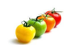 Alignment of multicolored tomatoes Stock Photo