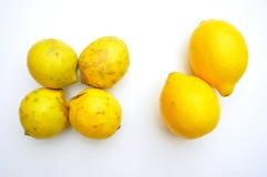 Aliment biologique contre la nourriture d'OGM : citrons photographie stock libre de droits