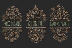 Aliment biologique, gluten gratuit, logo de menu du marché d'agriculteur Élément typographique de croquis tiré par la main de vec Photographie stock libre de droits