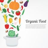 Aliment biologique Icônes végétales de nourriture Concept sain de consommation Vecteur Photo libre de droits