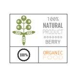 Aliment biologique Logo, insigne, label pour la consommation saine, icône de baie illustration stock