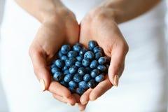 Aliment biologique sain La femme remet complètement des myrtilles mûres douces image stock