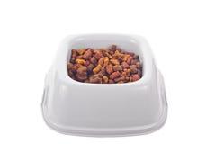 Aliment pour animaux familiers sec dans une cuvette en plastique Photo stock