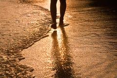 Alimentação do homem de passeio na água Fotos de Stock Royalty Free