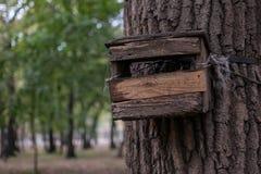 Alimentación de madera Imagenes de archivo