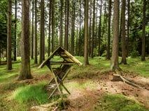 Alimentador de la comida para los ciervos en bosque checo Imagen de archivo