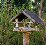 Alimentador de madeira do pássaro Fotografia de Stock