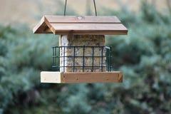 Alimentador de madeira do pássaro completamente do alimento fotos de stock royalty free
