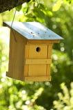 Alimentador del pájaro Imagen de archivo libre de regalías