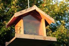 Alimentador del pájaro Imagen de archivo