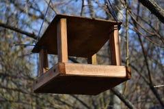 Alimentador 4 del pájaro fotografía de archivo libre de regalías