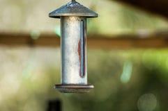 Alimentador del pájaro Fotografía de archivo