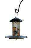 Alimentador del pájaro Imagenes de archivo