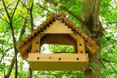 Alimentador del pájaro en un árbol en el bosque de la primavera Fotos de archivo libres de regalías