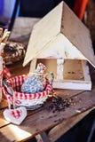 Alimentador del pájaro con las semillas en casa de campo en primavera Fotografía de archivo