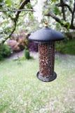 Alimentador do pássaro do jardim Fotografia de Stock